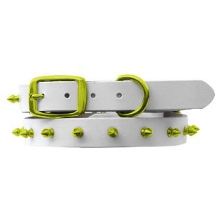 Platinum Pets White Genuine Leather Dog Collar with Spikes   Corona Lime (11