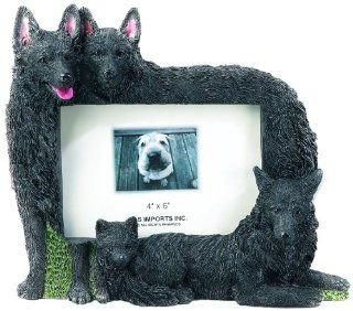 E&S Pets 35257 104 Large Dog Frames  Pet Memorial Products