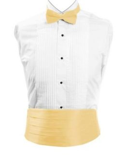Boy's Solid Poly Satin   Bow Tie and Cummerbund Sets , Yellow Clothing