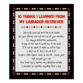 Funny Things I Learned My Labrador Retriever Print