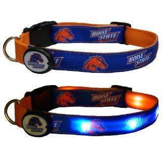 NCAA LED Light Up Dog Collar