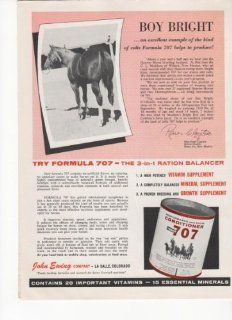 Boy Bright Quarter Horse Formula 707 Conditioner 1963 Antique Advertisement  Prints