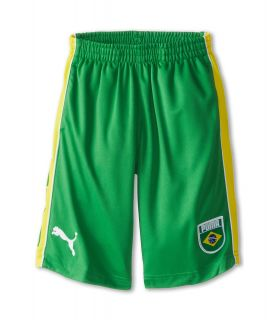 Puma Kids Brasil Short Boys Shorts (Green)