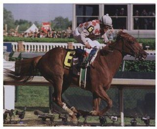 2003 Kentucky Derby Funny Cide #868   Poster (10x8)   Prints