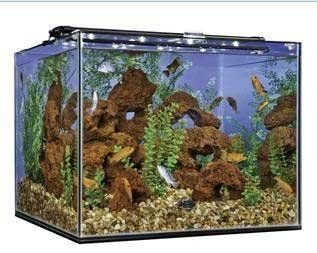 93 Gallon Tank Cube Frameless W/ Overflow