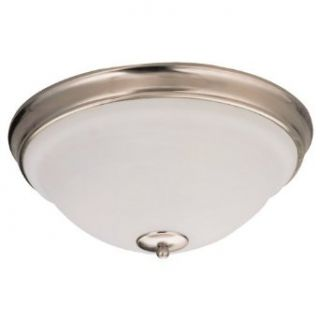 Sea Gull Lighting 79058BLE 962 Serenity Single Light Flourescent Close To Ceiling Fixture, Excavated Alabaster Glass Bowl and Brushed Nickel