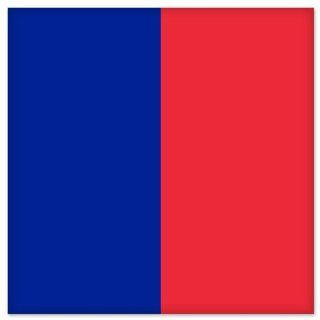 "Paris City Flag car bumper sticker window decal 5"" x 5"" Automotive"