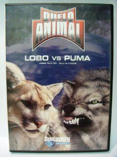 Duelo Animal Lobo Vs. Puma (Animal Face Off Wolf Vs. Cougar) Movies & TV