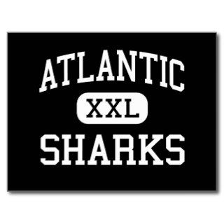 Atlantic   Sharks   High   Port Orange Florida Post Card