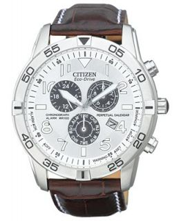 Citizen Mens Eco Drive Perpetual Calendar Chronograph Brown Leather Strap Watch 44mm BL5470 06A   Watches   Jewelry & Watches