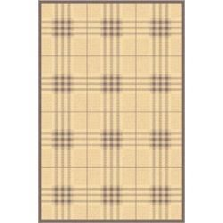 Contemporary Indoor/outdoor Natural/brown Rug (53 X 77)