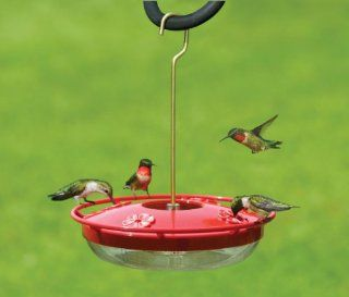Aspects HummZinger HighView 12 oz Hanging Hummingbird Feeder  Wild Bird Feeders  Patio, Lawn & Garden