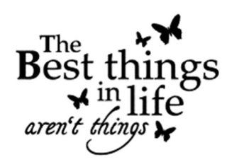 Design with Vinyl Design 179 The Best Things In Life Aren't Things Peel and Stick Sticker Vinyl Wall Decal, 15 Inch By 20 Inch, Black