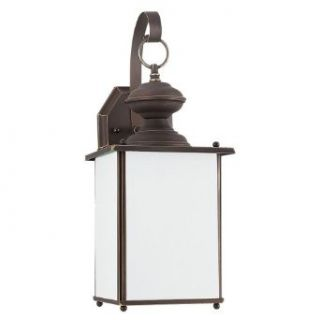Sea Gull Lighting SEA 84158D 71 Dark Sky Dark Sky Outdoor Wall Lantern One Light in Antique   Wall Porch Lights