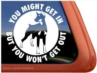 You Might Get In, But You Won't Get Out ~ Doberman Pinscher Dog Vinyl Window Decal Sticker Automotive