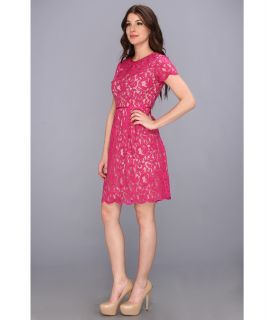 Adrianna Papell Pleat Scallop Lace Dress