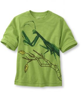 Boys Short Sleeve Graphic Tees, Praying Mantis