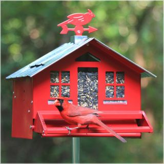 Perky Pet Squirrel Be Gone Country Style Bird Feeder