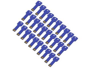 Litop Pack Of  30  Blue 1GB Metal Key Shape USB Flash Drive USB 2.0 Memory Disk
