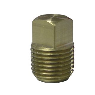 Watts 3/8 in Brass Pipe Fitting